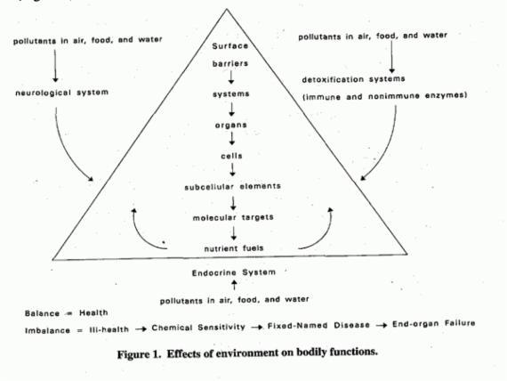 Stoffwechselprozesse und Regelkreise